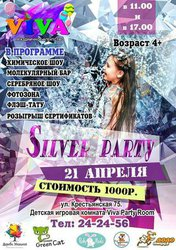 Silver party
