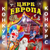 Розыгрыш билета на цирковое представление!