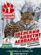 Звнрский аппетит леопарда