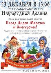 «Парад Дедов Морозов и Снегурочек»