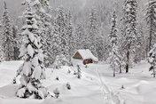 Зима-россияночка