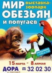Выставка обезьян и попугаев