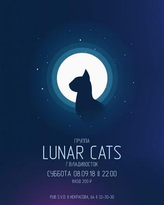 Lunar cats