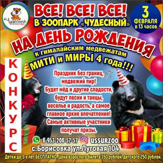 Розыгрыш билета на день рождения гималайских медвежат!