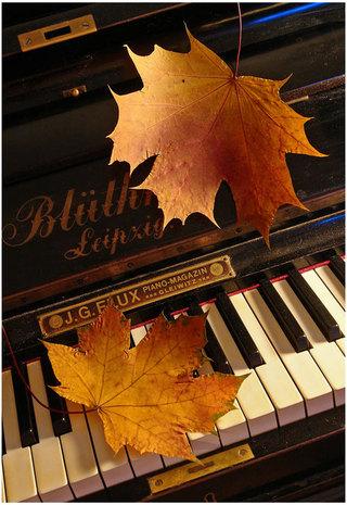 Осенний бал