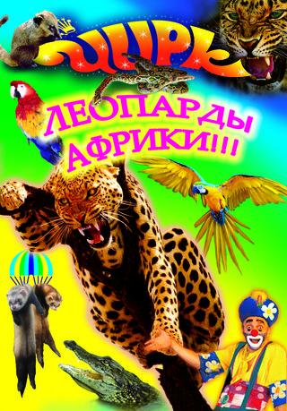Цирк зверей из города Омска