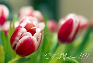 «Праздник Весны»