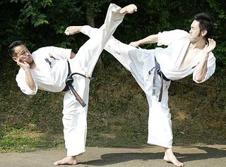 Чемпионат по киокусинкай каратэ-до