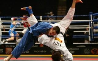Открытый турнир УГО по борьбе дзюдо