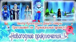 «Новогодние приключения...»