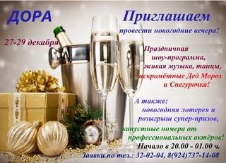 Новогодний вечер