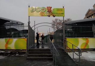 Торжественное открытие зооэкспозиции