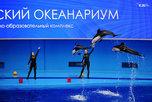 В Приморском океанариуме на острове Русском погибли два дельфина-белобочки