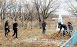 Уссурийские волонтеры приняли участие в экологической акции