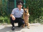 Автомобильного вора из Уссурийска помогла задержать служебная собака