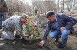 В Уссурийске Андрей Тарасенко вместе с кадетами Суворовского училища принял участие в субботнике