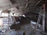 Вблизи Уссурийска сотрудники транспортной полиции обнаружили ферму с наркотиками