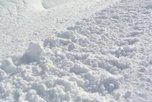 Бизнесмен из Приморья подарил Уссурийску снег