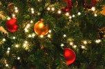 В Уссурийске особенных детей ждут «Приключения в новогоднем лесу»