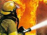 На свиноферме под Уссурийском произошел крупный пожар
