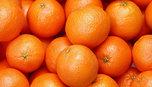 Более 700 килограммов мандаринов из Испании уничтожили в Уссурийске