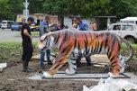 Уссурийский тигр поселился на транспортном кольце около ж/д вокзала