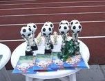 Турнир по мини-футболу на кубок главы состоится в Уссурийске