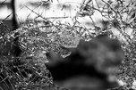 «Это беда»: очевидцы пишут о жительнице Уссурийска, которая убила ребёнка