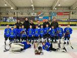 Фестиваль по хоккею, посвященный Дню защитника Отечества, прошел в Уссурийске