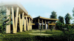 Музей тайги построят в Уссурийске