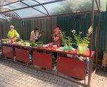 Дачная ярмарка работает в Уссурийске