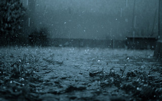 Сильный дождь ожидается в Приморье