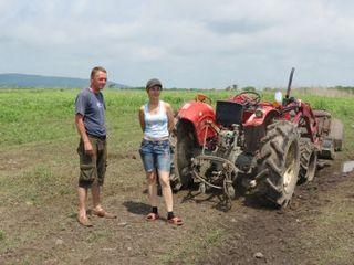 Начинающих фермеров Приморья поддержат рублем