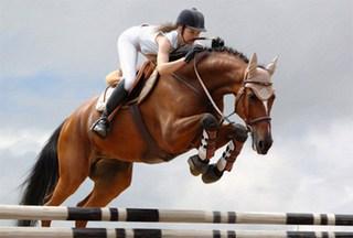 Соревнования по конному спорту прошли в Уссурийске
