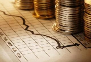 Публичные слушания по проекту бюджета на 2014 год прошли в Уссурийске