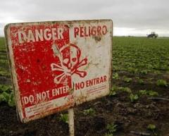 Опасные химикаты скрывали китайские рабочие под Уссурийском