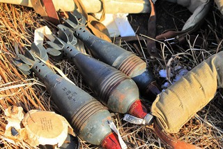 Более 10 мин обнаружили под Уссурийском