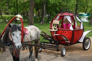 Три кареты каждые выходные отправляют жителей Уссурийска в сказку