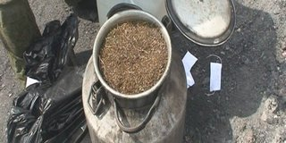 Наркоконтроль Уссурийска уничтожил 300 кг