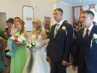 Число регистраций брака ежегодно увеличивается в Уссурийске