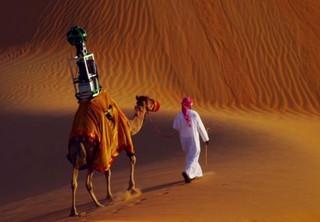 Сотрудником Google стал верблюд