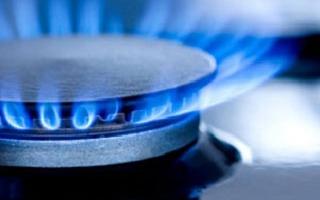 Вопрос с подачей газа в дома уссурийцев на особом контроле врио главы администрации УГО