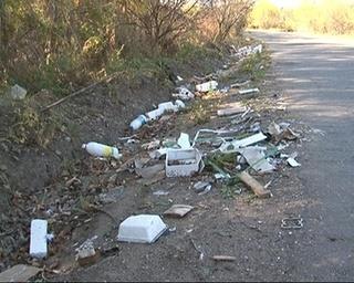 Откуда берется мусор вдоль дорог?
