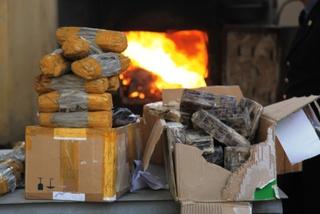 350 килограммов наркотических средств уничтожено в Уссурийске