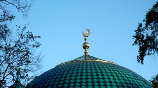 Уссурийские мусульмане обратились с жалобой к Владимиру Путину