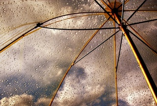 Ненастная погода около недели пробудет в Уссурийске.