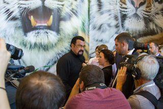 Стивен Сигал купил нож с изображением тигра на благотворительном аукционе