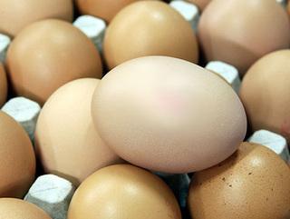 В Уссурийске неоднократно судимого бомжа соблазнили яйца
