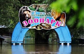 Пострадавшие от наводнения звери из зоопарка Уссурийска полностью выздоровели - ветеринары