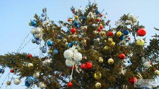 С 19 декабря в городских автобусах жителей Уссурийска будут поздравлять Дед Мороз и Снегурочка